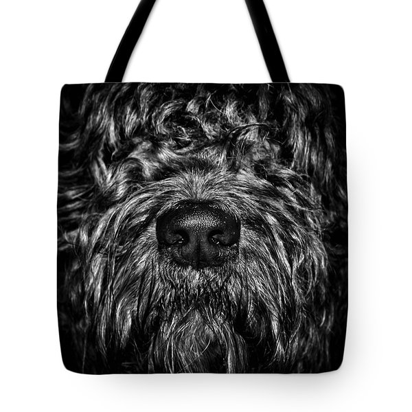 I Need To Go Outside Tote Bag by Brian Carson