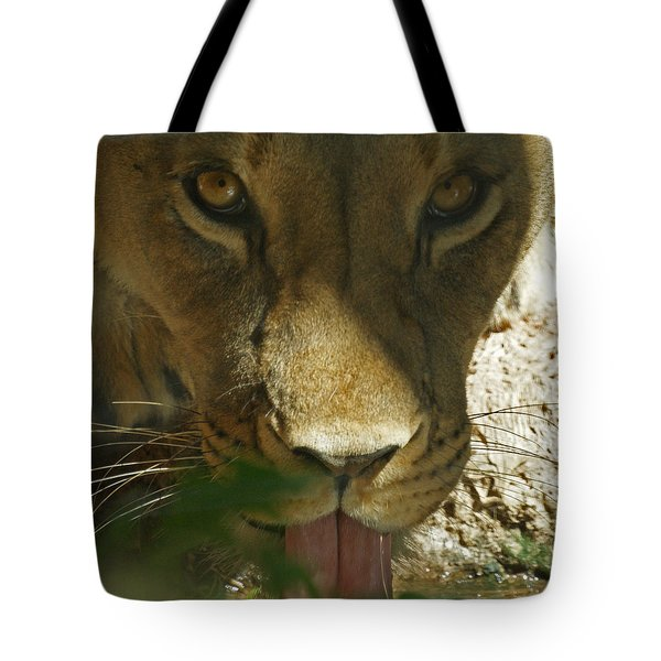 I See You 2 Tote Bag by Ernie Echols