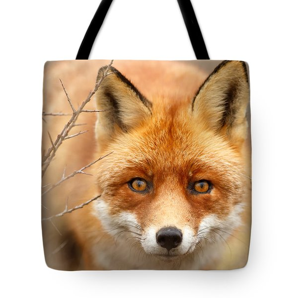 I See You - Red Fox Spotting Me Tote Bag