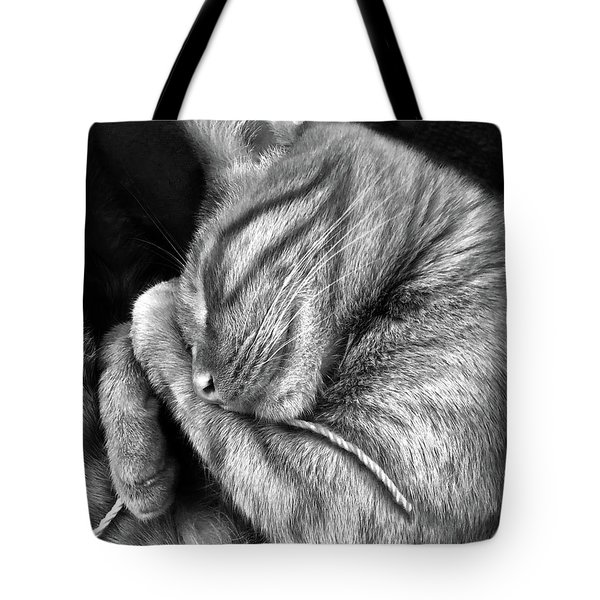 Tote Bag featuring the photograph I Shall Call Him Stringy by Shevon Johnson