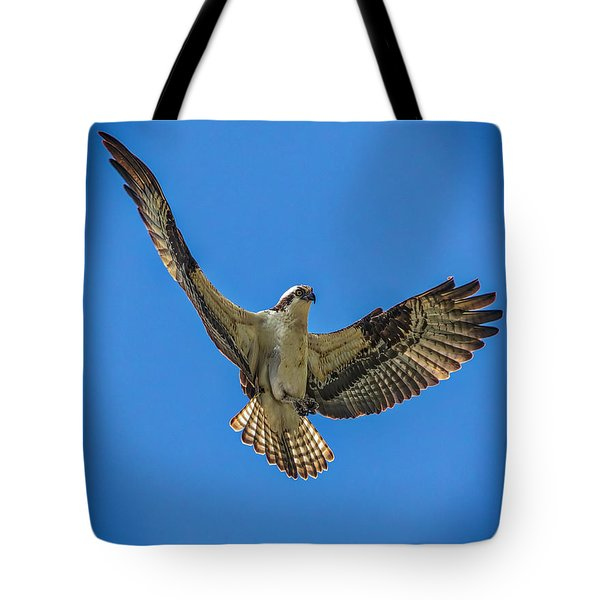 Tote Bag featuring the photograph I Tell Ya That Fish Was This Big by Mitch Shindelbower