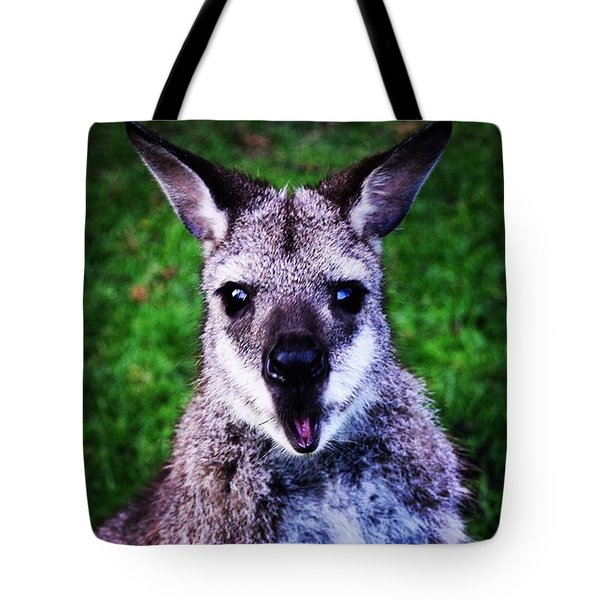 I Think I Took This Guy By Suprise 😯 Tote Bag
