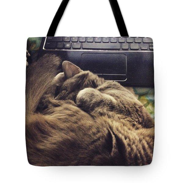 Study Cat Tote Bag