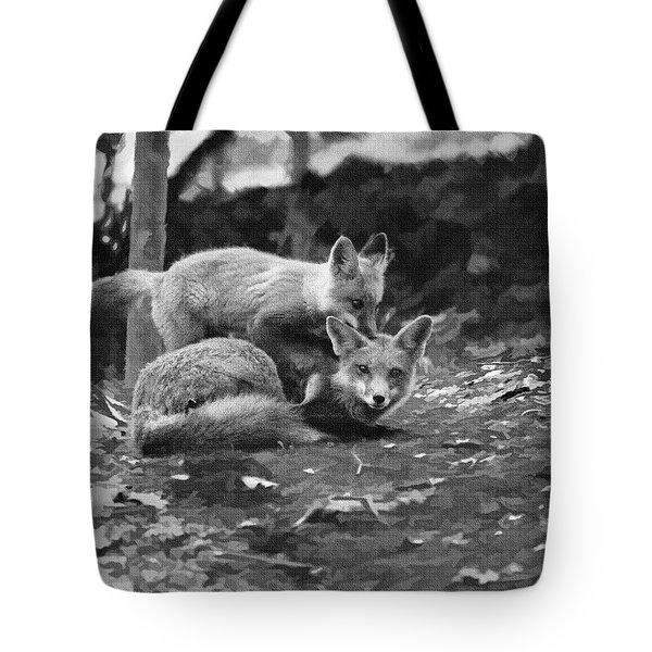 I Want A Ride Tote Bag