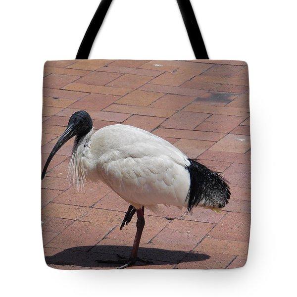 Ibis Bird Tote Bag
