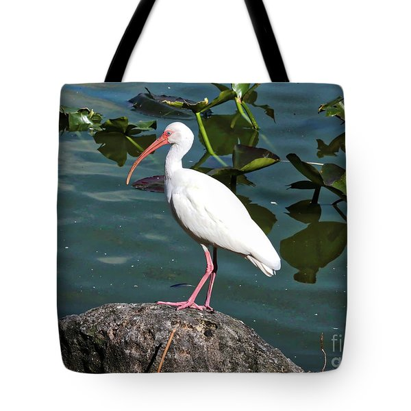 Ibis Rock Tote Bag