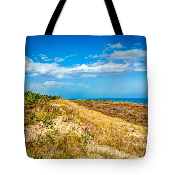 Ice Age After Noon Tote Bag