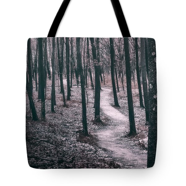 Ice Age Trail Near Lapham Peak Tote Bag