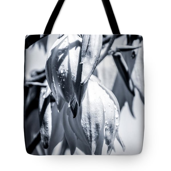 Tote Bag featuring the photograph Ice Ball by Stwayne Keubrick