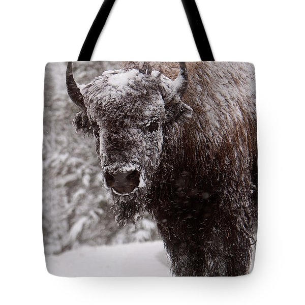 Ice Cold Winter Buffalo Tote Bag