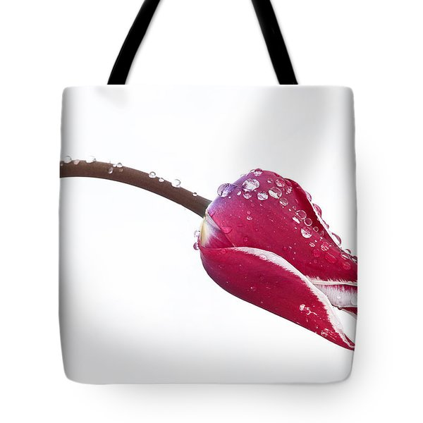 Ice Drops On Tulip Tote Bag by James Steele