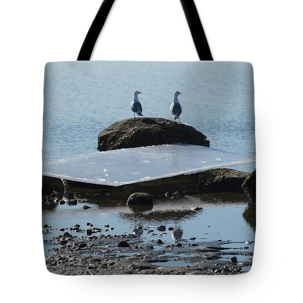 Ice Monolith Tote Bag