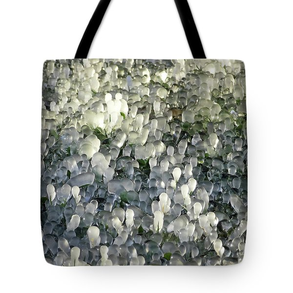 Ice On The Lawn Tote Bag