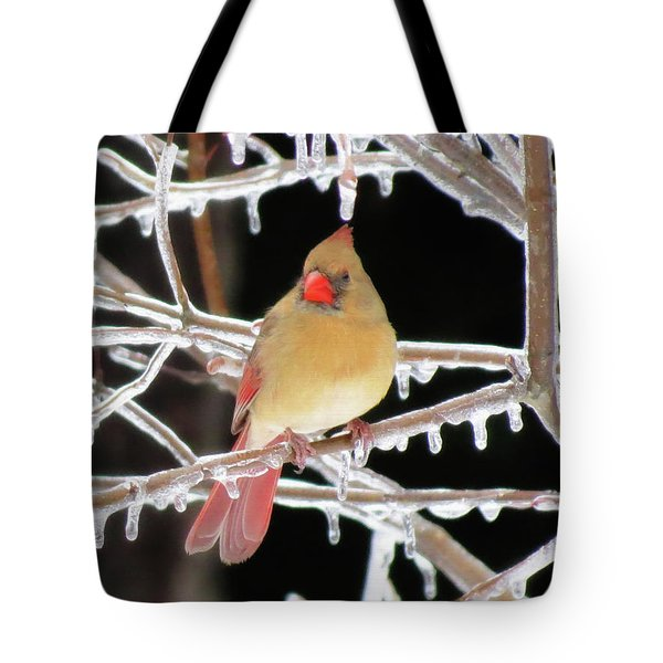 Ice Princess Tote Bag by MTBobbins Photography
