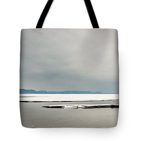 Tote Bag featuring the photograph Ice Sheet by Dan Traun