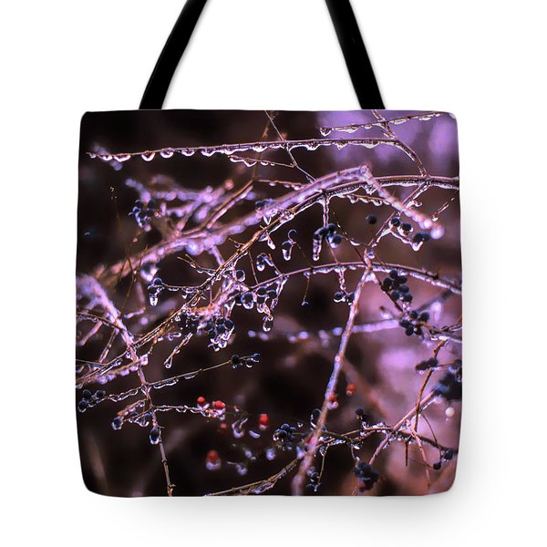 Tote Bag featuring the photograph Ice Storm by Richard Goldman