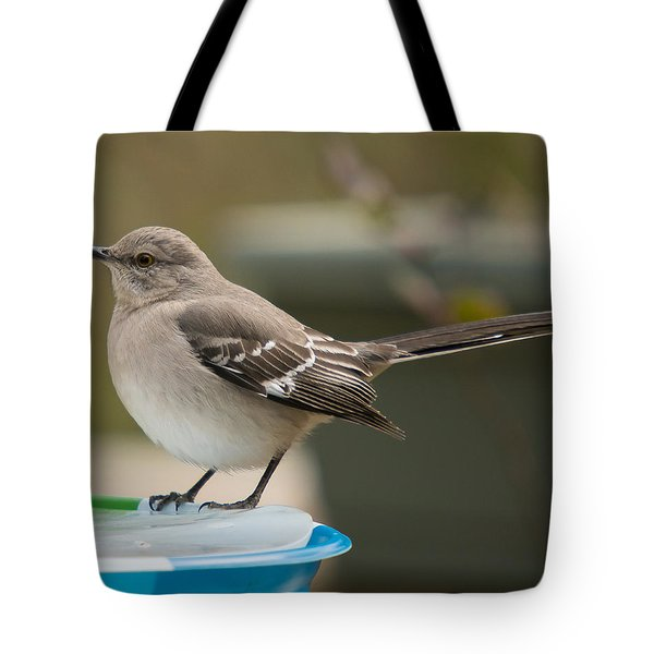 Ice Water Tote Bag by Robert L Jackson