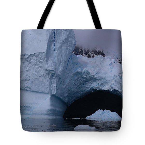 Iceberg Passthrough Tote Bag by Andrei Fried