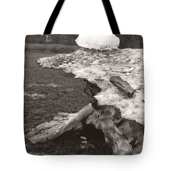 Iceberg Silo Tote Bag by Heather Kirk
