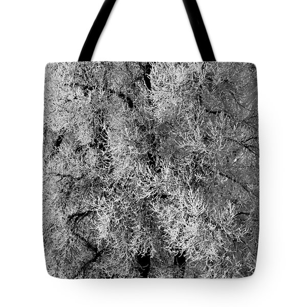 Iced Cottonwoods Tote Bag by Colleen Coccia