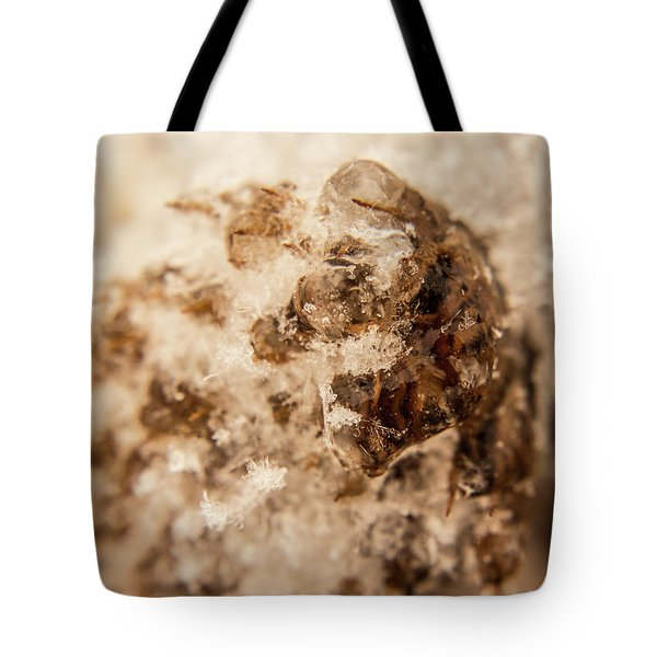 Tote Bag featuring the photograph Iced Out by Tyson Kinnison