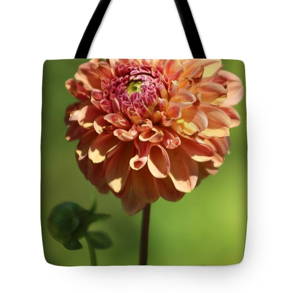 Iced Tea Dahlia In Marzipan And Milano Tones Tote Bag