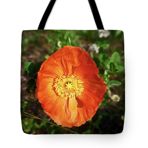 Iceland Poppy Tote Bag by Sally Weigand