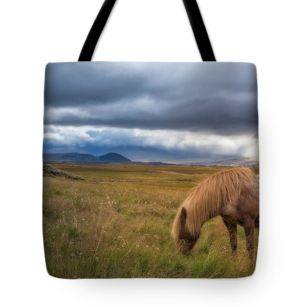 Tote Bag featuring the photograph Icelandic Pastoral With Iconic Horse by Rikk Flohr