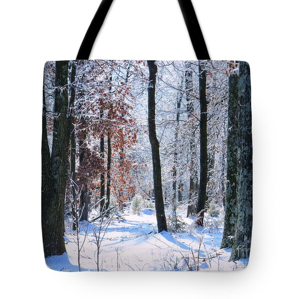Icey Forest 1 Tote Bag by Craig Walters