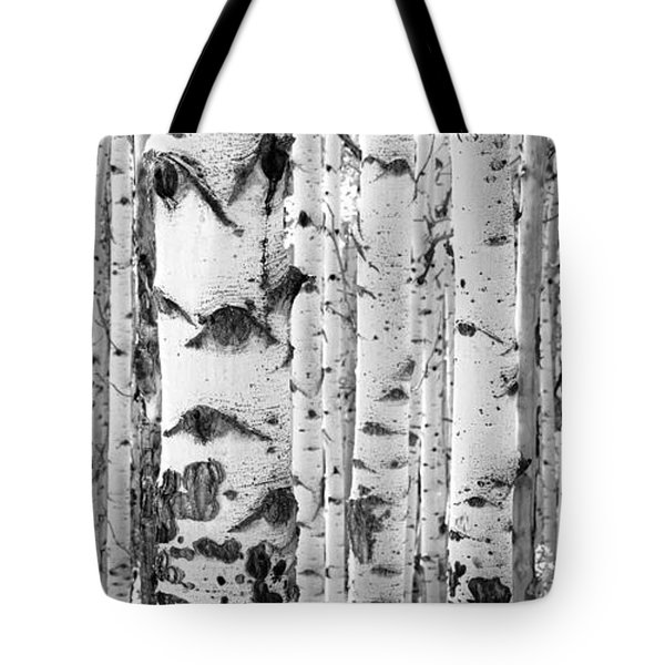Iconic Tote Bag by The Forests Edge Photography - Diane Sandoval