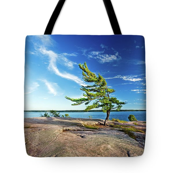 Iconic Windswept Pine Tote Bag