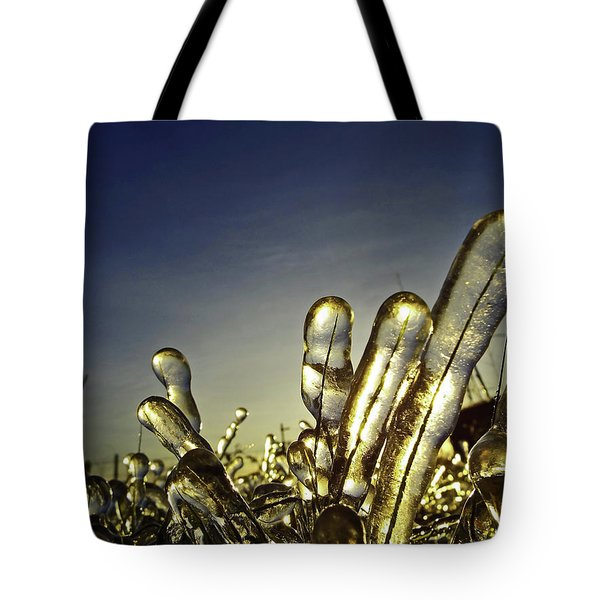 Icy Lawn Tote Bag
