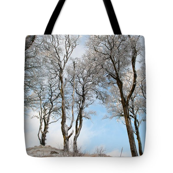 Icy Trees Tote Bag