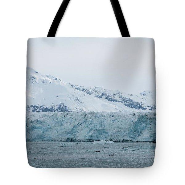 Icy Wonderland Tote Bag