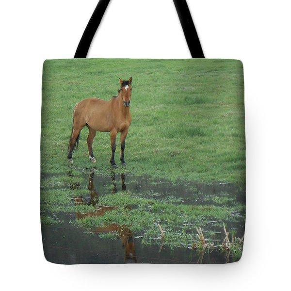 Idaho Farm Horse1 Tote Bag by Cynthia Powell
