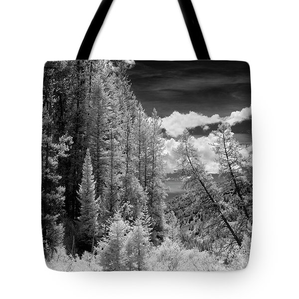 Idaho Passage Tote Bag