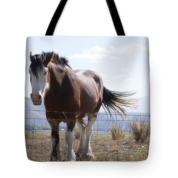 Idaho Work Horse 2 Tote Bag by Cynthia Powell