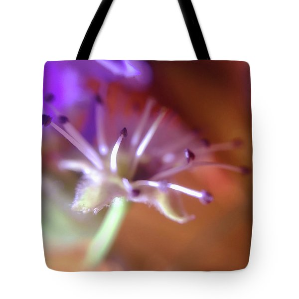 Idora Park Original Concept Art Tote Bag