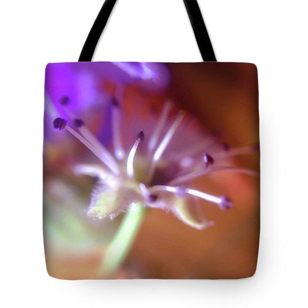 Idora Park Original Concept Art Tote Bag
