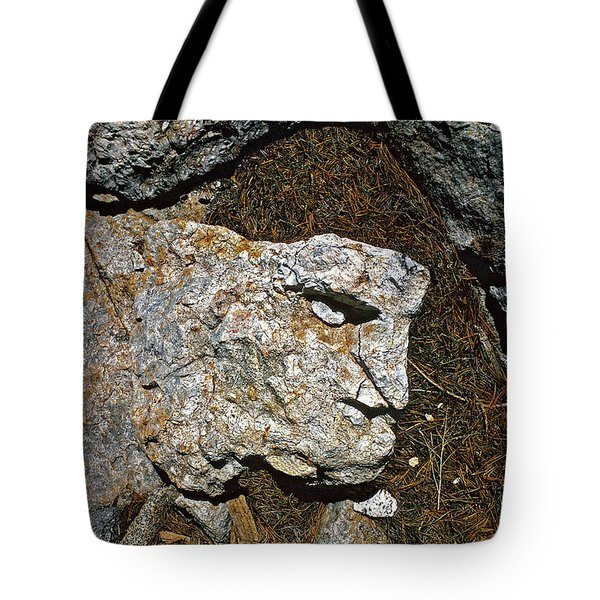 If Looks Could Grill Tote Bag