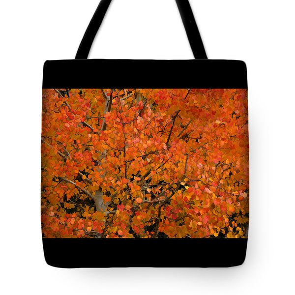 Tote Bag featuring the photograph If Trees Could Talk by Diane Alexander