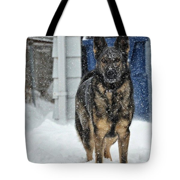 Tote Bag featuring the photograph If You Dare by Nikki McInnes