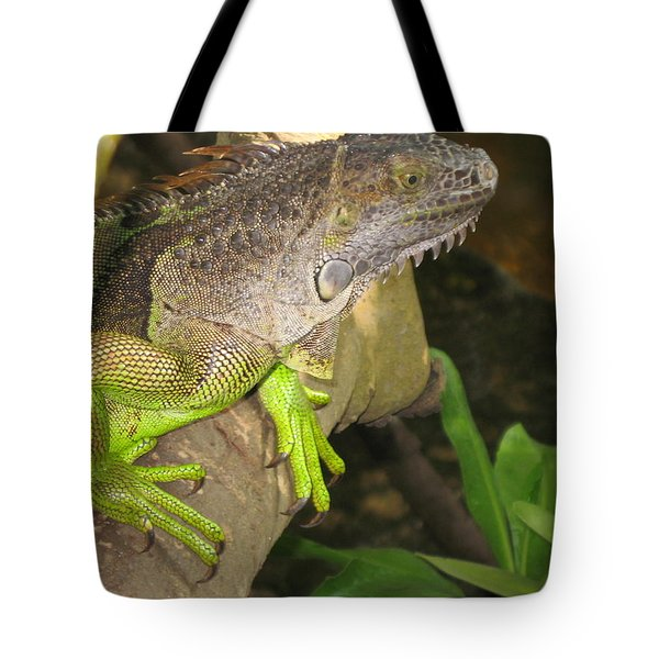 Tote Bag featuring the photograph Iguana - A Special Garden Guest by Christiane Schulze Art And Photography