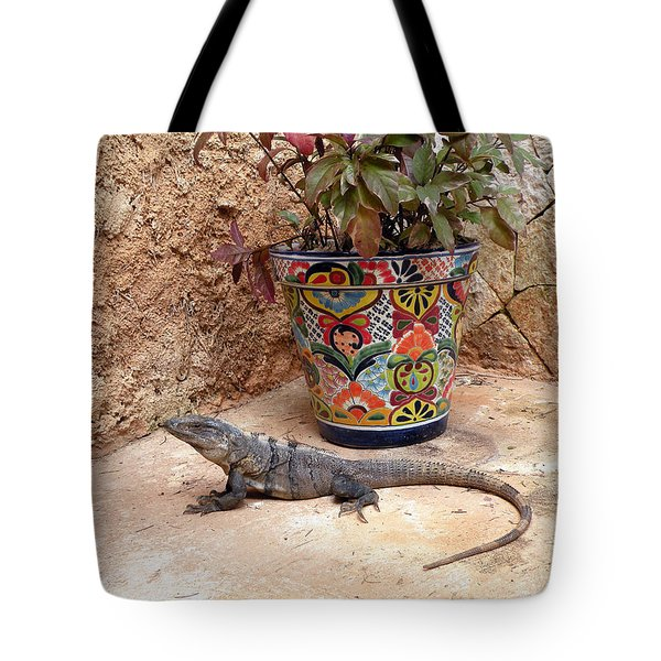 Tote Bag featuring the photograph Iguana by Dianne Levy