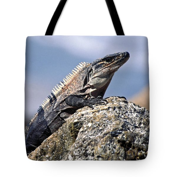Iguana Tote Bag by Sally Weigand