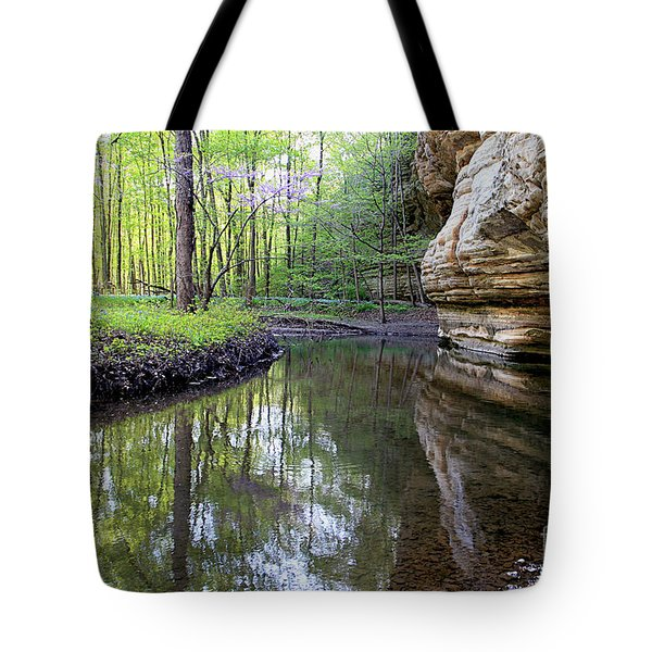 Illinois Canyon In Spring Starved Rock State Park Tote Bag