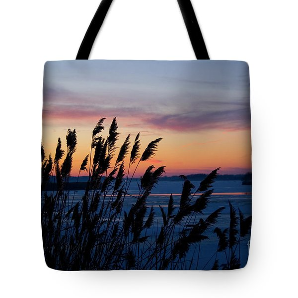 Illinois River Winter Sunset Tote Bag