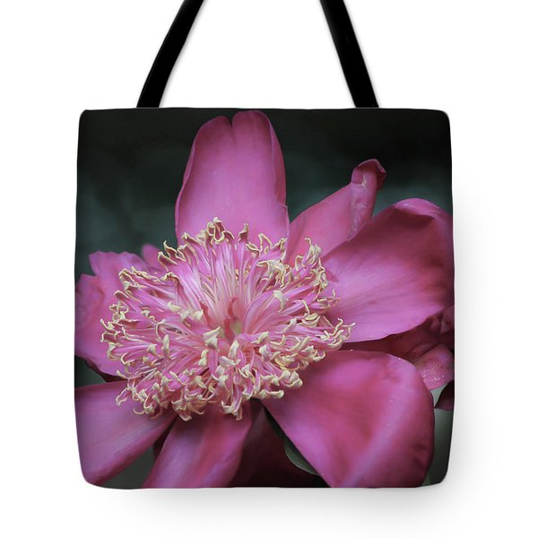 Tote Bag featuring the photograph Illuminant One by Deborah  Crew-Johnson