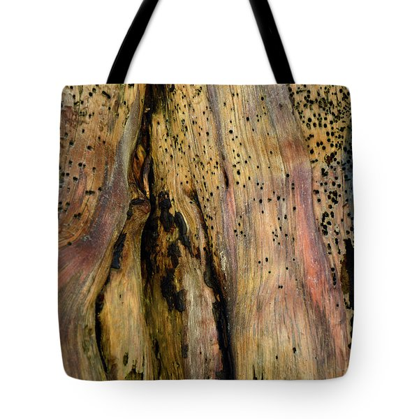 Illuminated Stump 02 Tote Bag by Bruce Gourley