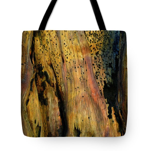 Illuminated Stump Tote Bag by Bruce Gourley